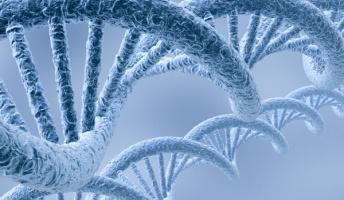 死の恐怖って全生物のDNAに組み込まれてんの?