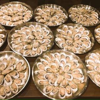 カキペディア|牡蠣百科