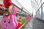 第二京阪国道の側道に『ウサギ』がめっちゃおる!そして道幅が狭くなって途中に花が飾られてる!