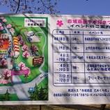 『初めての千本桜2015』の画像