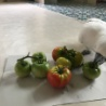 険しい野菜生活 暴風雨