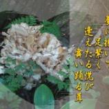 『フォト短歌「舞茸に舞う」』の画像