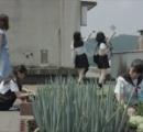 番組内で作物が育たなかったので買ってきた野菜を植えてテレ朝社長が謝罪