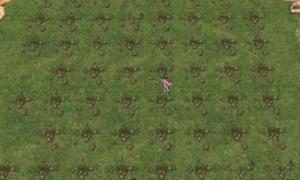 農場の草ぜんぶ抜く大作戦