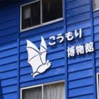 『白い蝙蝠の館』の画像