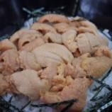 『【北海道ひとり旅】道東の旅 羅臼 濱田商店『羅臼のうに丼は醤油は少しで良い』』の画像