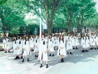 【日向坂46】お前らってやっぱり乃木坂や欅坂から流れておひさまになったんか?