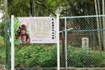 悔しそうな家康さんの表情も再現!?妙見坂小学校裏手の竹やぶにある『家康ひそみの藪』の看板が新しくなってる!