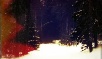 『山のタブー』『狐道』『女だけのお参り』他 山にまつわる怖い話