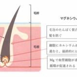 『マグネシウムと抜け毛(マグネシウムでスカルプケア)』の画像