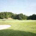 1994年5月28日、「ゴルフの日」記念日