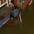 子ネコが水路に落ちて鳴いていた。このままじゃ溺れてしまう! 気づいた少年が救出を試みる → 結果…