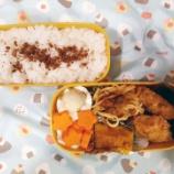 『アメリカdeお弁当⑧』の画像