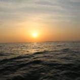 『5月28日 釣果 午後からキャスティング』の画像