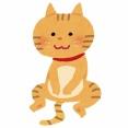 【画像】我が家に来て2日目なのにやたら人懐っこい子猫がこちらwwww