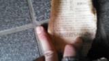 納屋から日本刀が出てきたから通報したったwwwww(※画像あり)