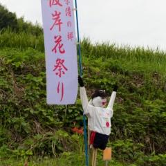 彼岸花祭り【2016】