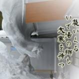 『氷の牙』の画像