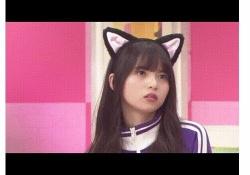かわいいにゃ♡ 乃木坂46メンバーの「にゃんこ」コスが素敵すぎるwww