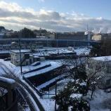 『4年ぶりの大雪 その2』の画像