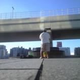 『東京オリンピック2020エンブレム盗作疑惑の7次元』の画像