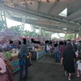 『伝統市場フェスで食べ物を物色@圓山』の画像