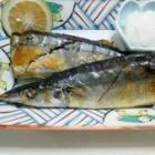 『秋刀魚 二句』の画像