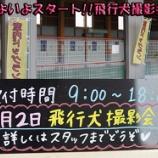 『第2回「飛行犬撮影会」開催!inワイズドギー射水店』の画像
