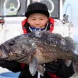 『1月4日 釣果 ロックフィッシュ ゆっくりサクッと釣行 クロソイ50UP!』の画像