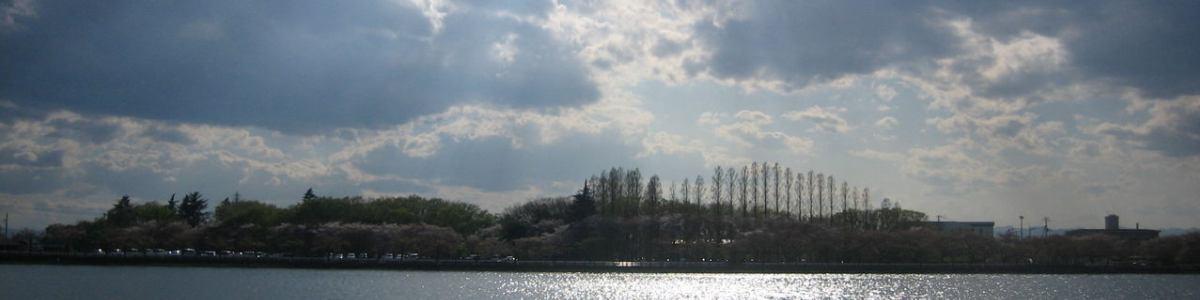 川越相続行政書士事務所のblog イメージ画像