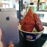 『「恵比須屋食堂」 ~ソースカツ丼タワーできているの初めて見ました~』の画像