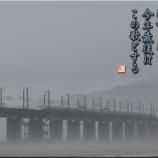 『霞を照らす』の画像