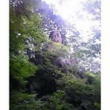 『探訪奥多摩の自然6「天狗岩」』の画像