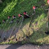 『田植えから1ヵ月、梅雨の谷間の草刈り作業!蒸し暑さが半端ないって!!』の画像