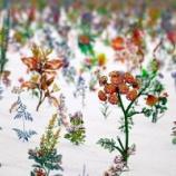 『2日間で山も海も満喫!日本最大規模のアートイベント・茨城県北芸術祭に行ってきたよ〜!』の画像