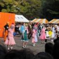 第61回東京大学駒場祭2010 駒場祭デモンストレーション