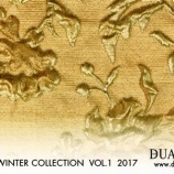 『DUAL VIEW AW COLLECTION VOL.1 2017』の画像