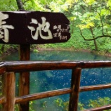 『青森県 十二湖 青池』の画像