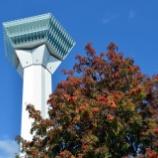 『10月16日 秋晴れの五稜郭タワーと香雪園(函館)』の画像