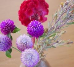 ハロウィンパッケージで届いたお花【PR】