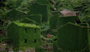 ラピュタかよ!中国で緑化しすぎの村発見。これはちょっと行ってみたい