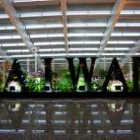 『台湾で、まずはゆっくり。。』の画像