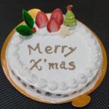 『今日はクリスマス♪犬用ケーキでワンちゃんも楽しいクリスマスを!』の画像