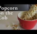 【ドカン!】動画:昔懐かしい 爆発させて作るポップコーン  中国