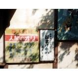 『(福岡)日本唯一の珍獣「なまけもの」』の画像