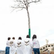 【芸能】AKB48、新たな復興支援ソング「掌が語ること」を8日から世界無料配信 アイドルファンマスター