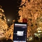 『月昇るさくらやま』の画像