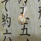 『明日香村の春』の画像