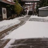 『重い雪』の画像