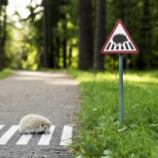 『道路標識』の画像